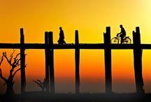 Bisikletler / Bicycles