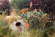 indigenous gardens