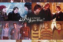 Potter y compañia