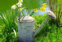 -Watering Cans-