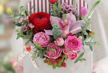 Съемка цветов для сайта