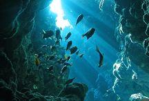 tenger látványosságai