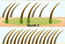 Cuidando el cabello
