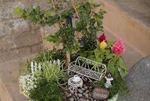 Mini giardini ☺