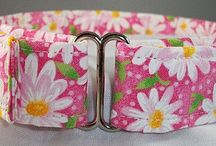 Flower Dog Collars / by Buddy and Friends