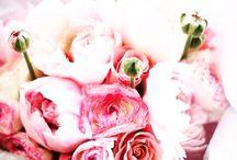 Huzur dolu bir hafta geçirmeniz dileğiyle!  / Mutlu bir Pazartesi ve huzur dolu bir hafta geçirmeniz dileğiyle!  #escicekcom #pazartesi #çokyakında #çiçektasarım #çiçeğinyeniesintisi #esçiçek