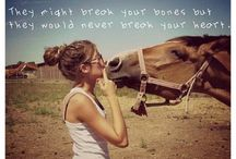 horse quotes ♡ / For the love of horses and country life