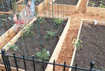Jardines / Jardines