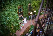 Ivy Room Wedding in Chicago, IL