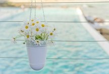wedding daisies inspi
