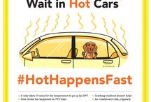 Hot Happens Fast / The #HotHappensFast campaign aims to raise awareness of #heat related illness in #cats & #dogs. Awareness is crucial to both #preparedness and #prevention. Learn more & join in at http://www.preventivevet.com/hot-happens-fast