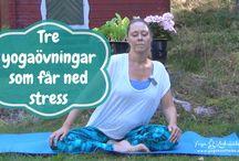 Yogavideos / Här hittar du videos med Mediyoga och kundaliniyoga