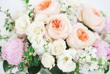 Pretty petals. / Florals that speak.