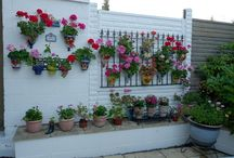Garden Walls & Fences