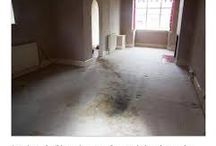 Friday Funnies-  Worst Real Estate photos!