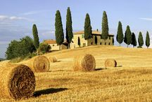 Dream of Tuscany / Tuscany is a wonderful land and the perfect place for a summer camp!