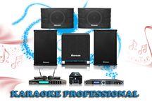 Dàn karaoke kinh doanh BA-02KD chuyên nghiệp / Dàn karaoke kinh doanh BA-02KD chuyên nghiệp, chất lượng âm thanh sống động, trung thực, mạnh mẽ, thiết kế đẹp mắt, sang trọng.