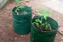 Home Garden Diggers Blog