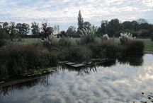 Sky Mirrors / You can see why our natural pools are called sky mirrors