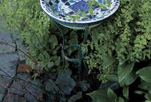Garden Ideas / Inspirations for my tiny garden / by Pamela Wills
