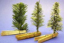Mini - Plante
