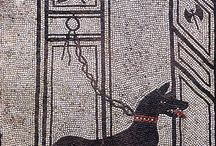 Pompei,Herculaneum