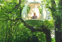 Project agia Anna tree house