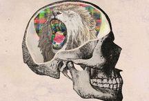 Skulls / by Jackie Staples