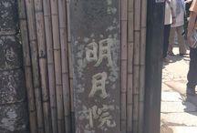 Kamakura 明月院(あじさい寺)