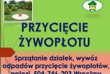 Przycięcie żywopłotu, cena tel 504-746-203, Wrocław. Przycinanie tui, drzew, formowanie żyopłotu / Przycięcie żywopłotu, formowanie żywopłotu, cennik tel 504-746-203, Wrocław. Pielęgnacja zieleni, podcięcie żywopłotu, przycięcie tui, krzewów, żywopłotu.Skrócenie, cięcia pielęgnacyjne zieleni. Podcięcie gałęzi.  http://www.omegaplus.home.pl/ogrodnik-wroclaw/