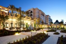 College and University Boutique Hotels