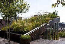 GREEN roof / wall / by Yana Demina