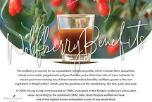Ningxia Red Benefits