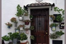 Casa florida