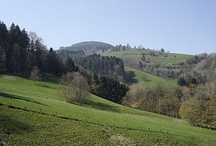 Germany: Sceneries