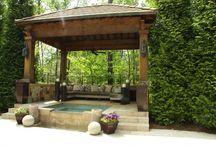 My Backyard / by Carol Garcia
