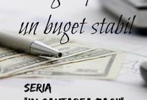 Organizare,buget in gospodarie