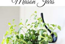 all things plants / indoor and outdoor plants, DIY projects for plants, planters & gardening