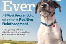 Dog Training Books / Excellent Dog Training Books