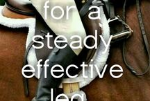 Horsey tips