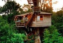 boomhut / huizen in bomen