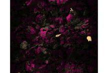 Pink Artworks & Prints