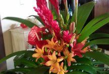 Modèle bouquet