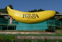"""Big Things / Iconic """"Big things"""" scattered throughout the South Pacific! Novelty architecture that, however strange or daggy, makes us smile!"""