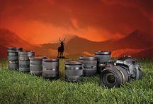 World Nikon / by Tomoyo Closs