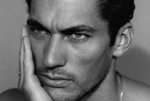 Gandyland, the sexiest place on Earth / all David Gandy all the time