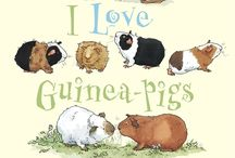 Guinea pigs are lovely