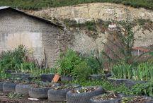 Beautifull Albania / Help me make a differance.