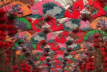 Lunar New Year | Inspiration