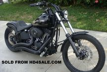 HD Softails / Pictures of Harley Davidson Softail motorcycles